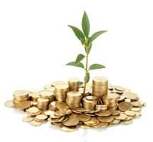 goedkoopste growshop online